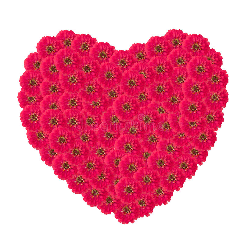 Free Heart Of Zinnias Flower Stock Photo - 46076290