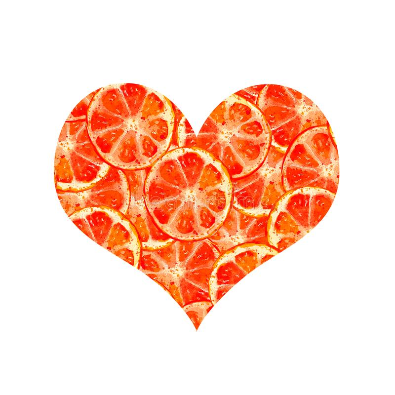 Heart oranges royalty free illustration