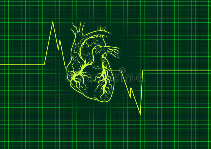 Download Heart outline stock illustration. Illustration of nerves - 5926332
