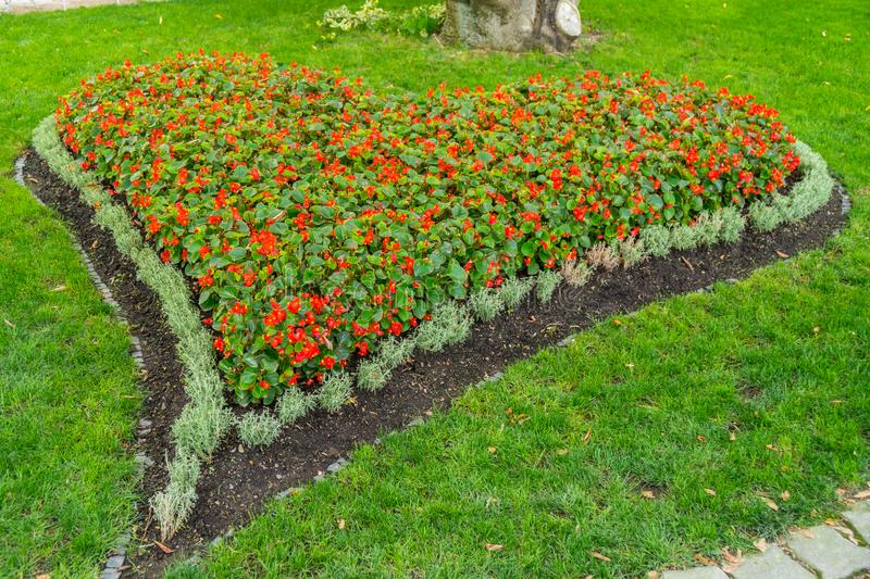 Heart painted with flowers on the lawn royalty free stock image
