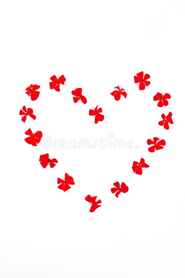Heart pattern of red natural flowers geranium on a white background stock images