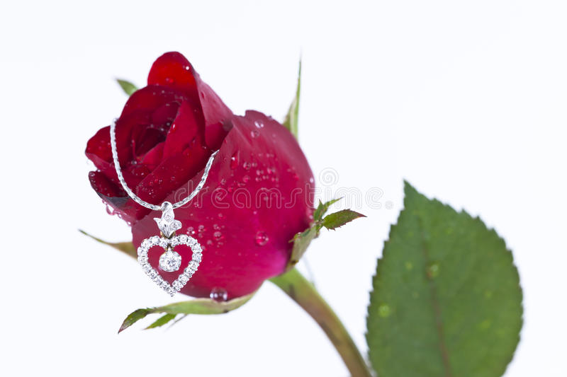 Heart pendant with diamond and red rose stock photo image of download heart pendant with diamond and red rose stock photo image of diamond symbol mozeypictures Image collections