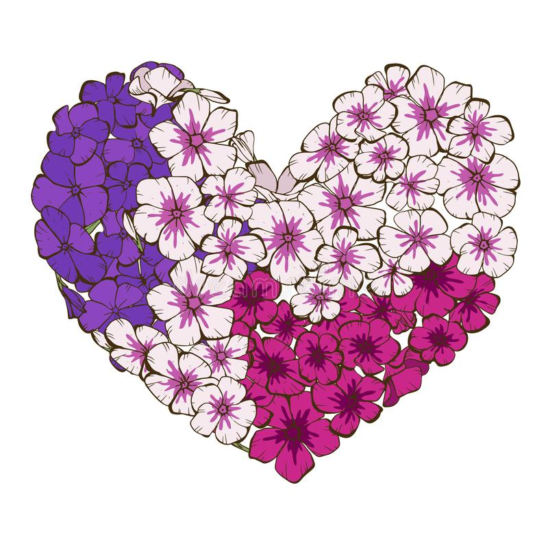 Heart of phlox flowers isolated on white background. Romantic flower collection. Vector Illustration for Happy Valentines Day stock illustration