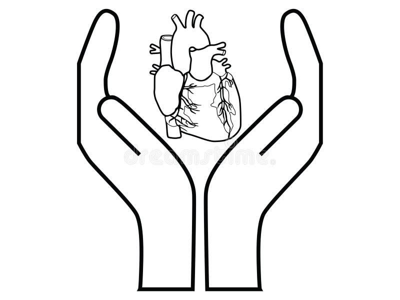 Heart protection stock illustration