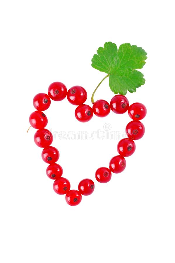 Download Heart of red currant stock illustration. Illustration of holiday - 15198361