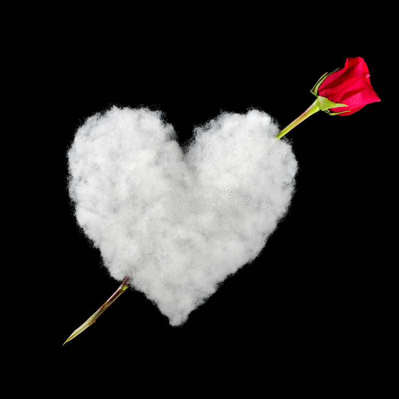 Heart and Red Rose as Arrow. Amor: White heart out of cotton with red rose as arrow photographed on black stock photo
