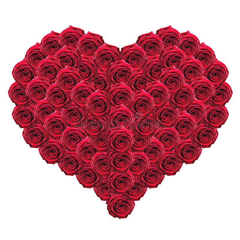 Heart of red roses. Isolated on white stock images