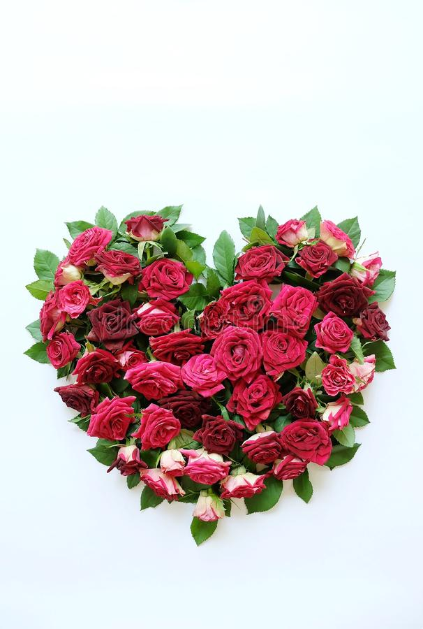 Heart of red roses. Beautiful heart of red roses stock photos