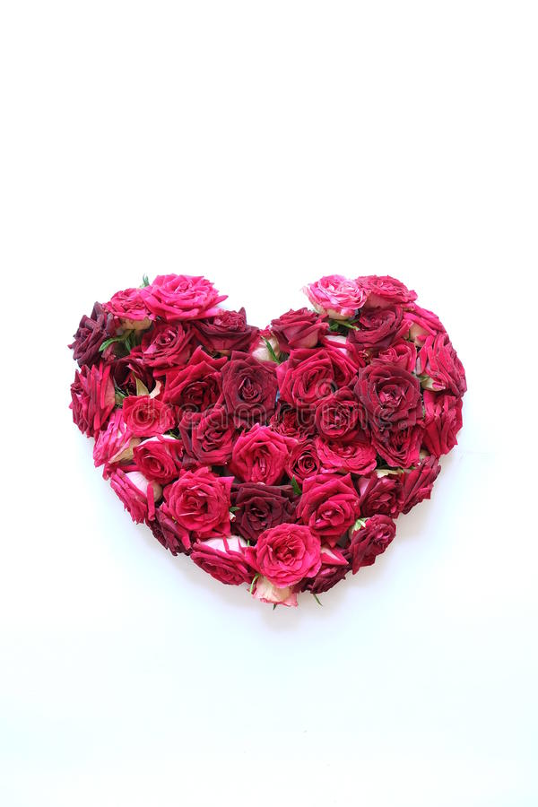 Heart of red roses. Beautiful heart of red roses stock image