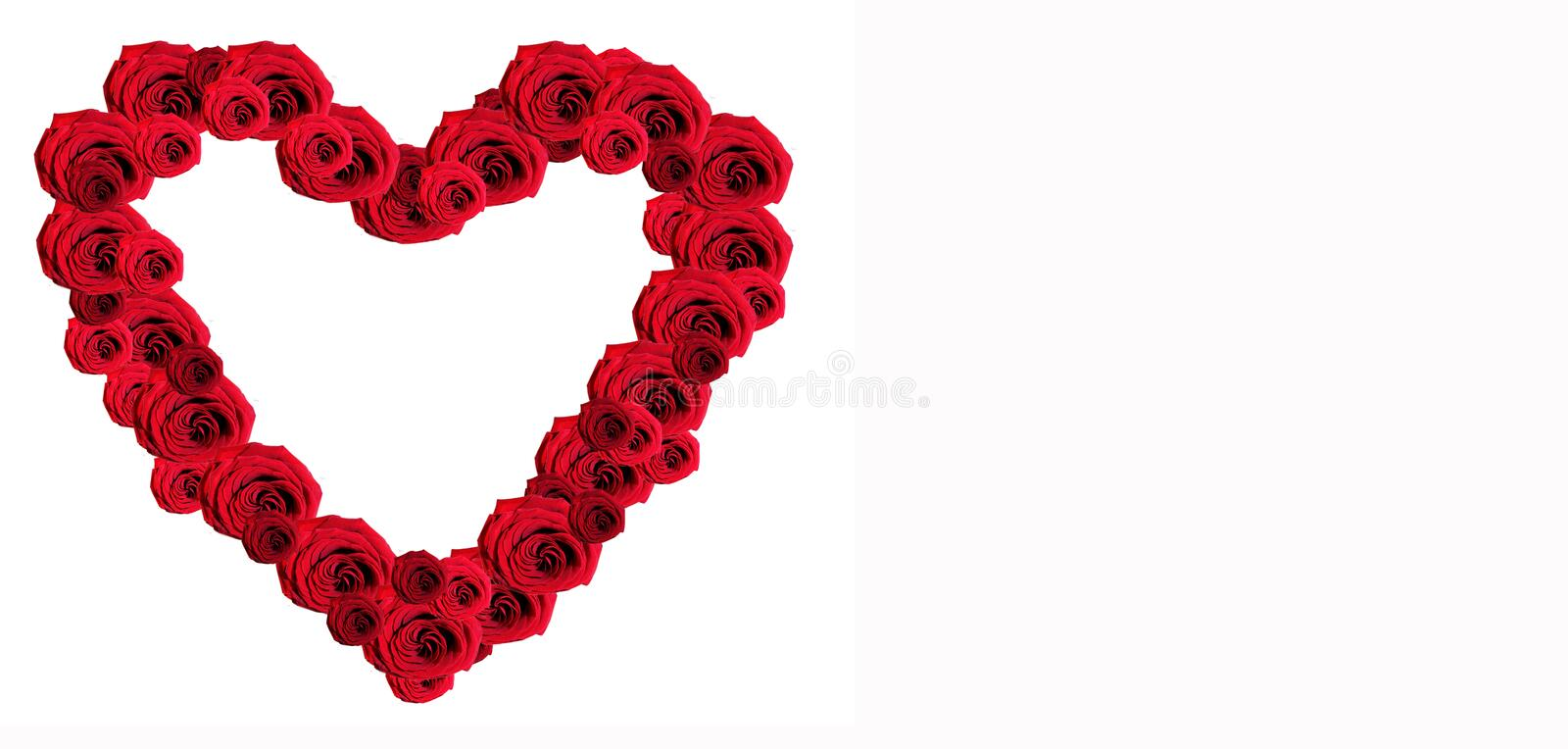 Heart of red roses. Beautiful heart of red roses isolated on white royalty free stock images