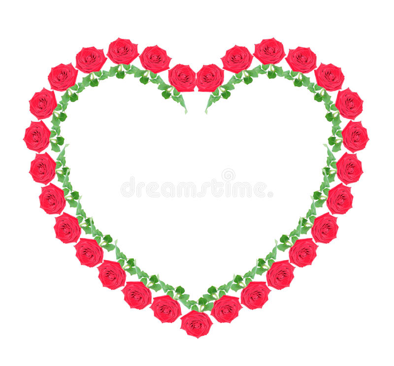 Heart from red roses, isolated. Heart from red roses on a white background, it is isolated stock photography