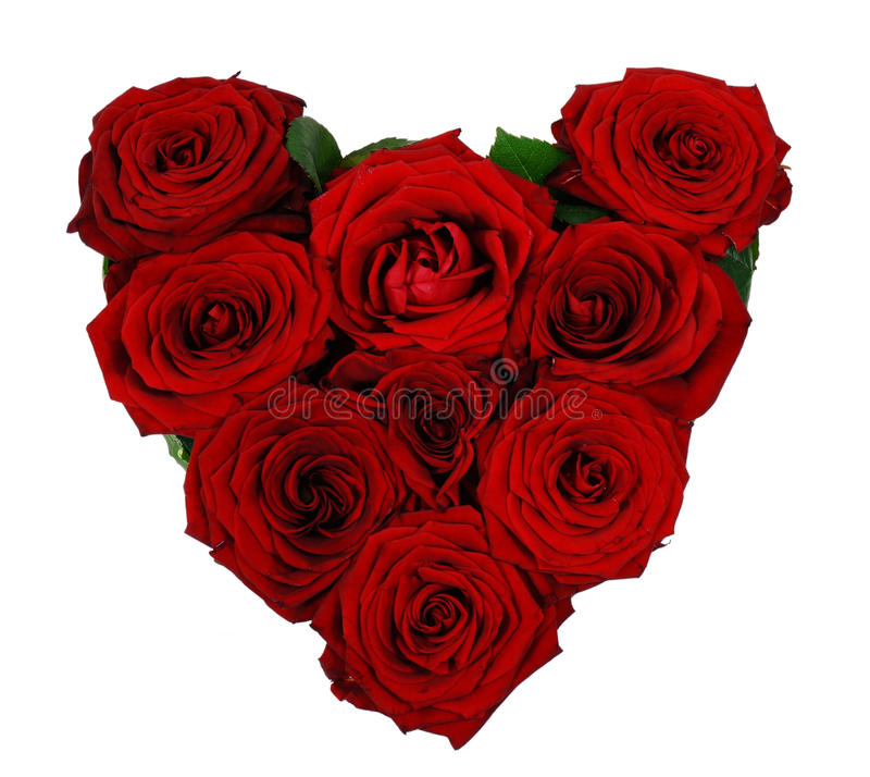 Heart of red roses. Isolated on white royalty free stock photo