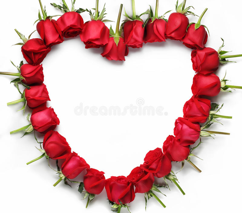 Heart of red roses. Isolated on white background stock images