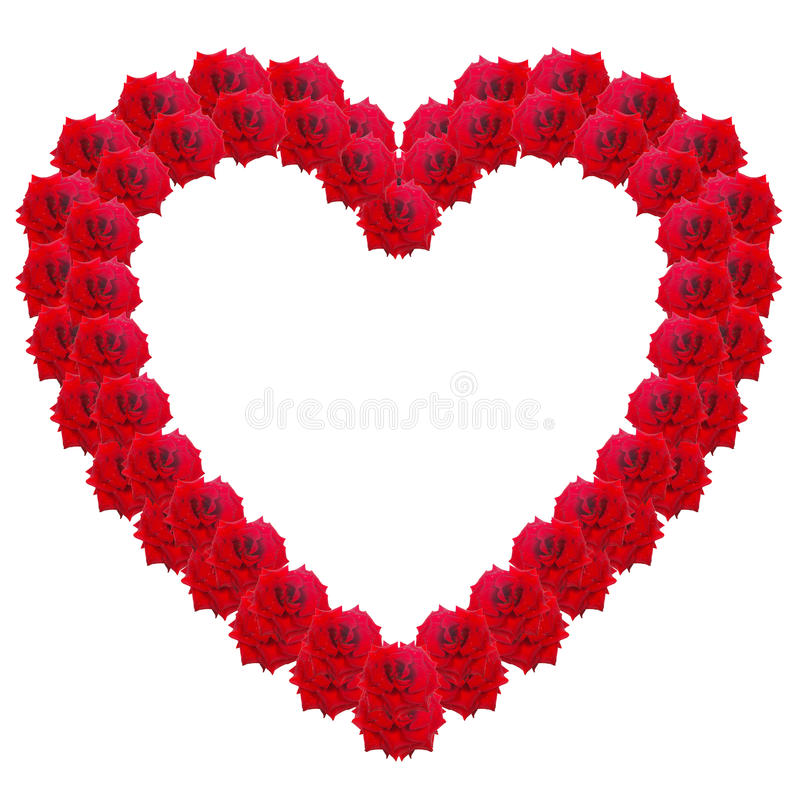 Heart of red roses isolated on a white background. Collage royalty free stock image