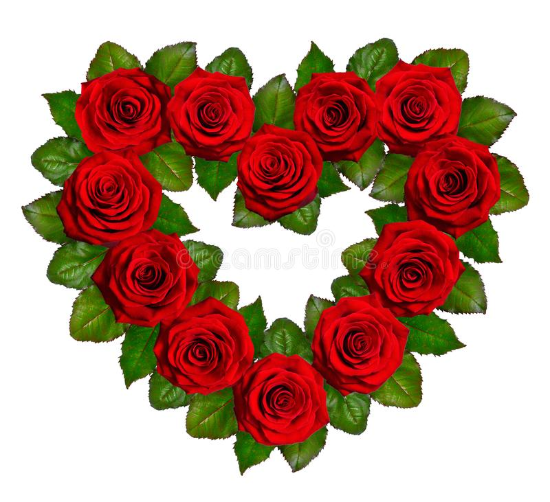 Heart of red roses. Isolated on white background.  stock photo