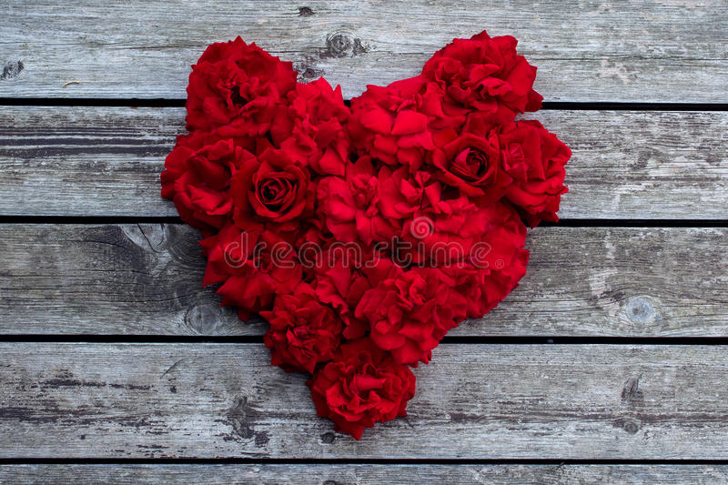 Heart of red roses. Red rose royalty free stock image
