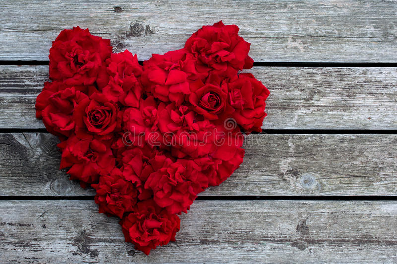 Heart of red roses. Red rose stock image