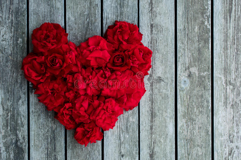 Heart of red roses. Red rose royalty free stock photos