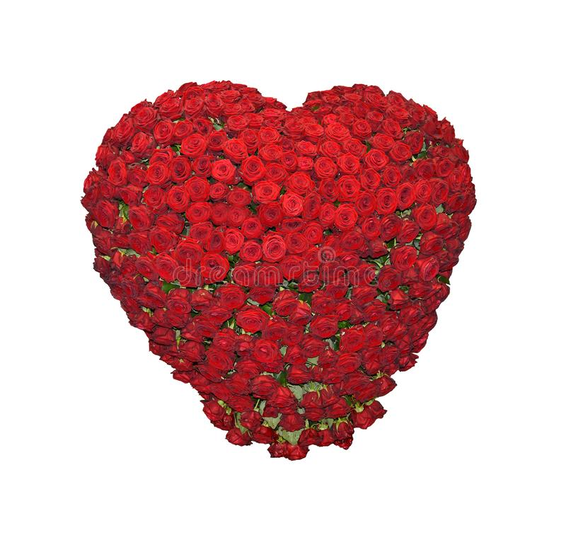 Heart from Red Roses. Valentines Day Heart from Red Roses Isolated on White Background stock photo