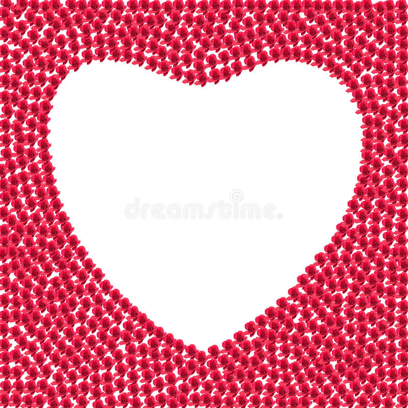 Heart from red roses. On white background royalty free stock images