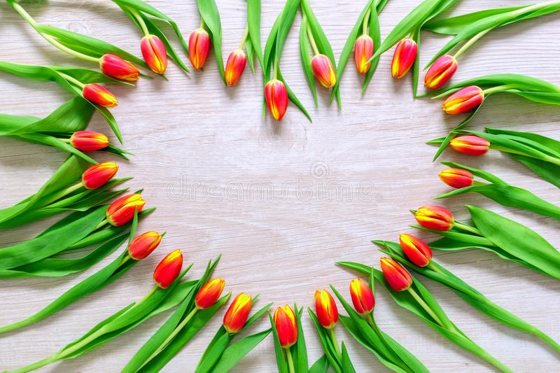 Heart from Red Tulips Flowers on rustic table for March 8, International Womens Day, Birthday , Valentines Day or Mothers day - Cl stock image
