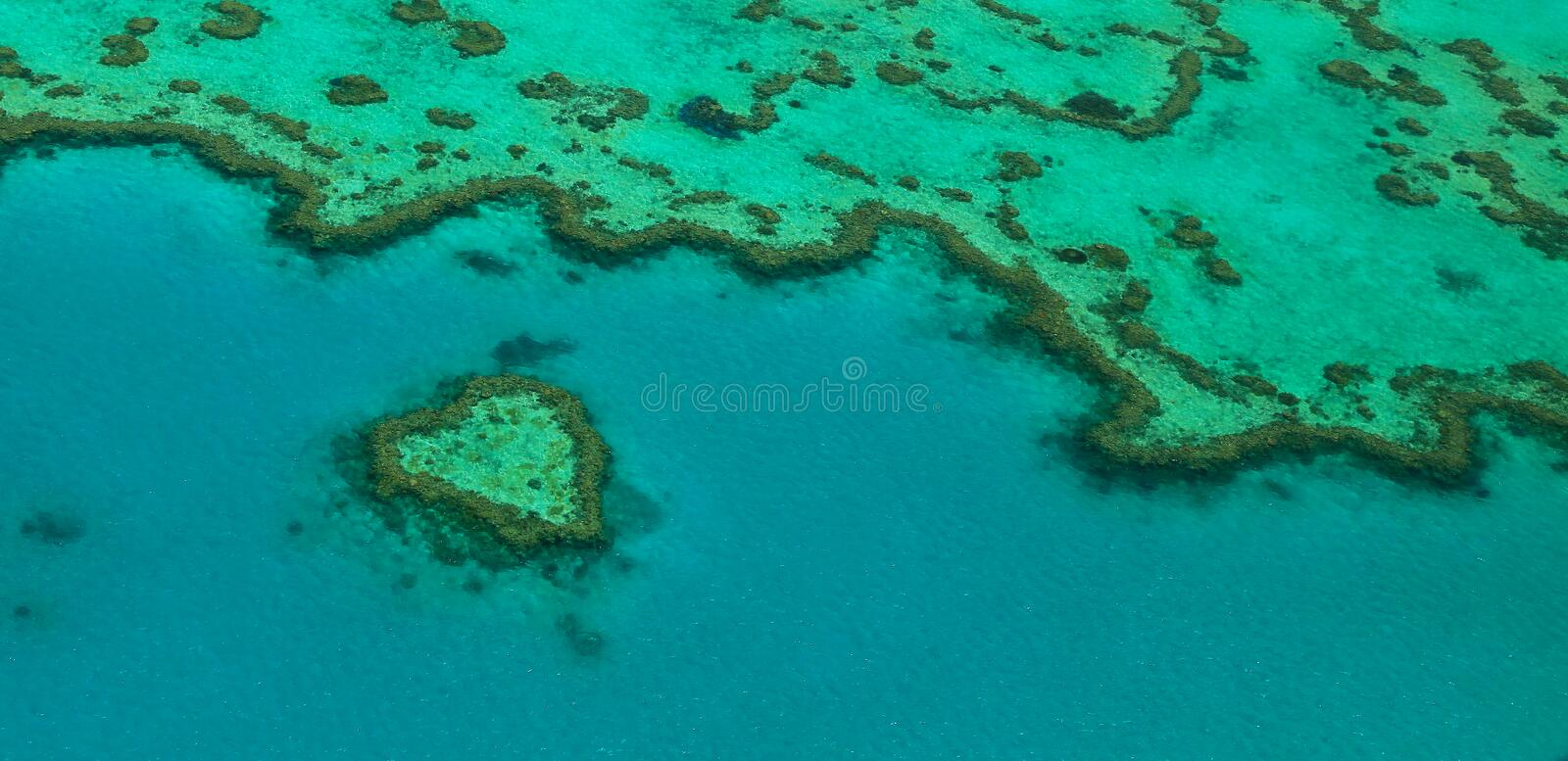 Download Heart Reef stock image. Image of queensland, paradise - 17064635