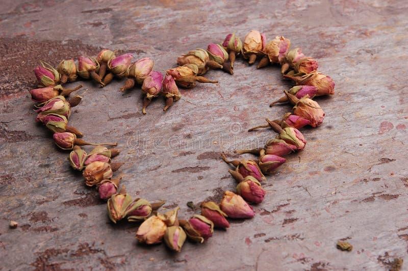 Heart of Roses stock photos