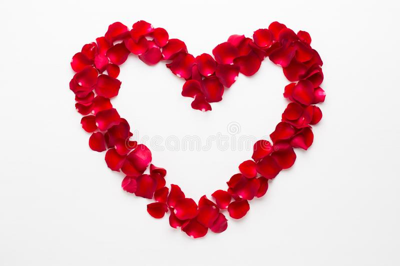 Heart of Roses on the white background. Valentines day greeting card.  royalty free stock photo