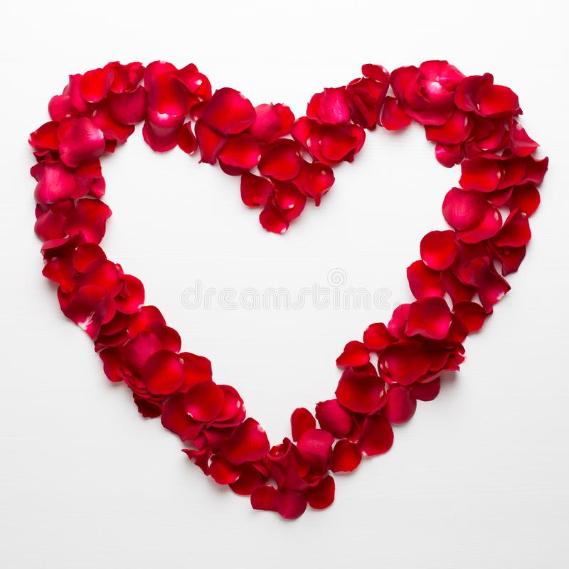 Heart of Roses on the white background. Valentines day greeting card.  stock photography
