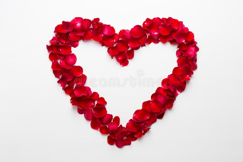 Heart of Roses on the white background. Valentines day greeting card.  royalty free stock photography