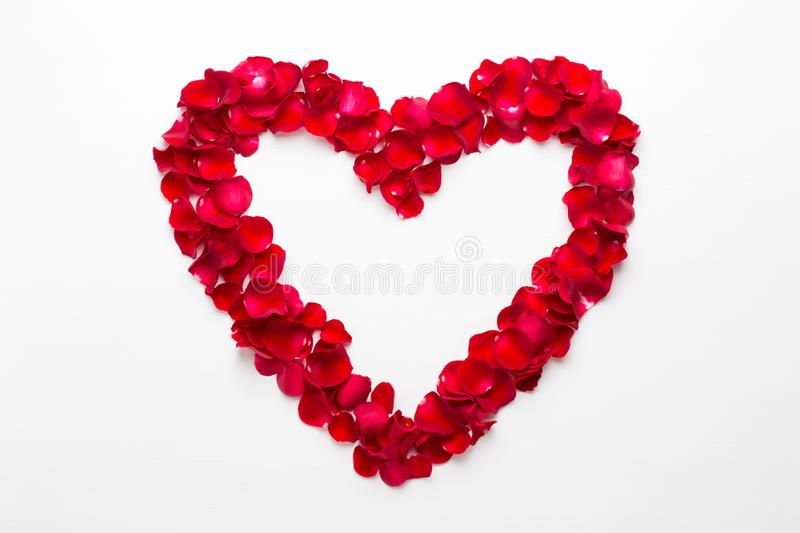 Heart of Roses on the white background. Valentines day greeting card.  royalty free stock images