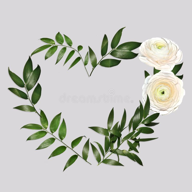 Heart shape floral frame with delicate creamy colored ranunculus flowers stock images