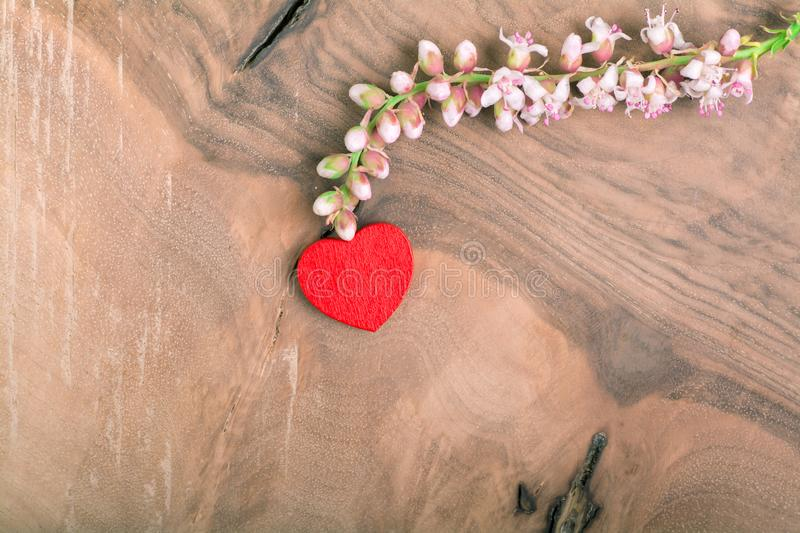 Heart with flower on wood royalty free stock photography
