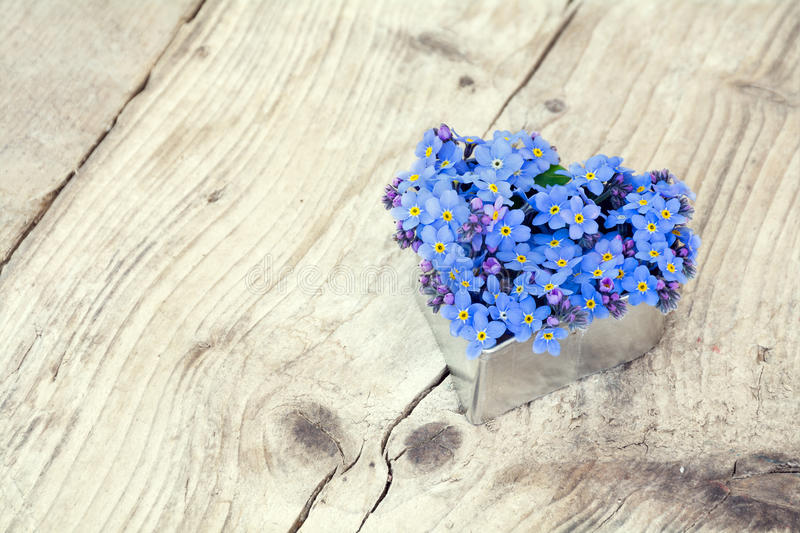 Image result for forget me not flowers heart