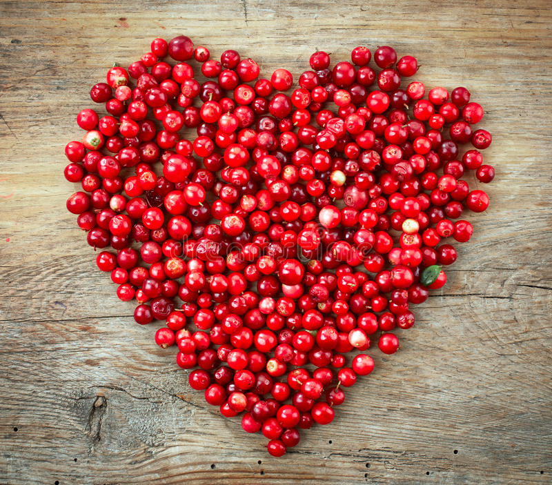 Heart shape of fresh berries. Heart shape of fresh cowberries royalty free stock photos