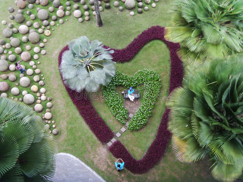 Download Heart shape Garden stock image. Image of area, foliage - 32351849
