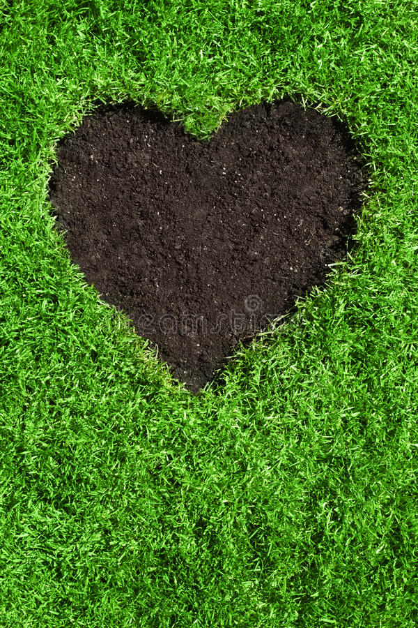 Download Heart shape in the lawn stock photo. Image of idea, soil - 24092552
