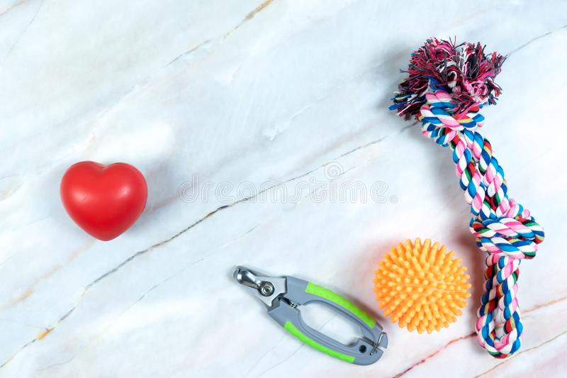 Heart shape, leashes, and toy for dog.  Pet are friend concept. Object for animal concept stock photo