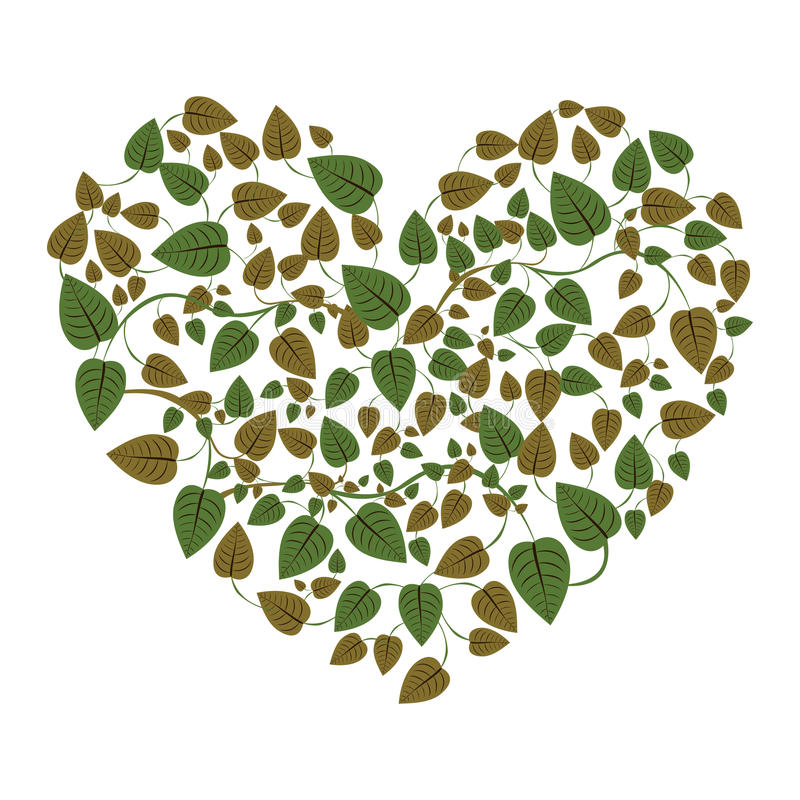 Heart shape leaves with creepers. Illustration stock illustration