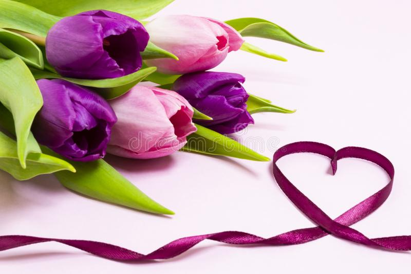 Heart shape made of purple ribbon and bouquet of purple and pink tulips on a light pink background. royalty free stock images