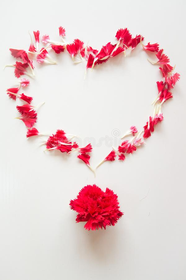 Heart Shape made by red carnation petals royalty free stock image
