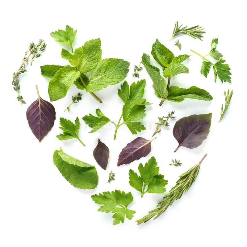 Heart shape made of various fresh herbs on white background stock photos