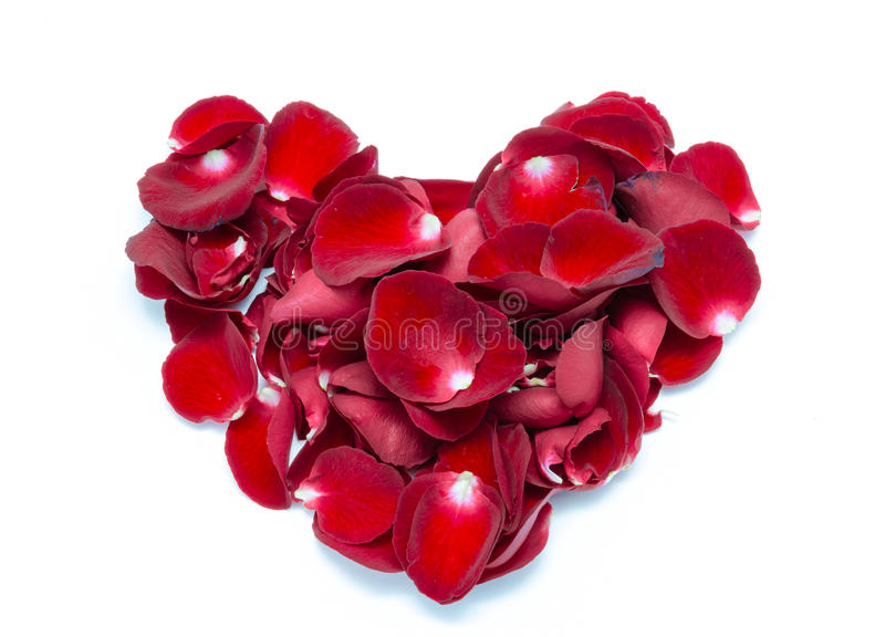 Heart Shape Red rose petal on white background royalty free stock photos