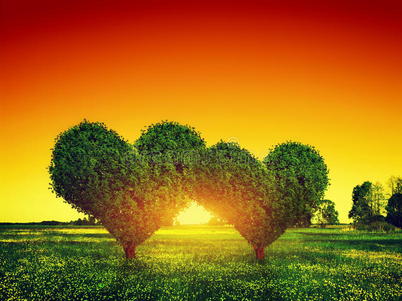 Download Heart Shape Trees Couple On Grass At Sunset. Love Stock Photo - Image: 47686886