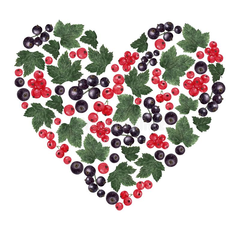 Heart shaped form filled with red and black currant berries and leaves stock illustration