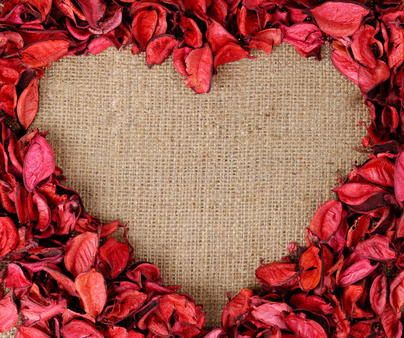 Heart Shaped Frame Made From Red Petals Royalty Free Stock Images