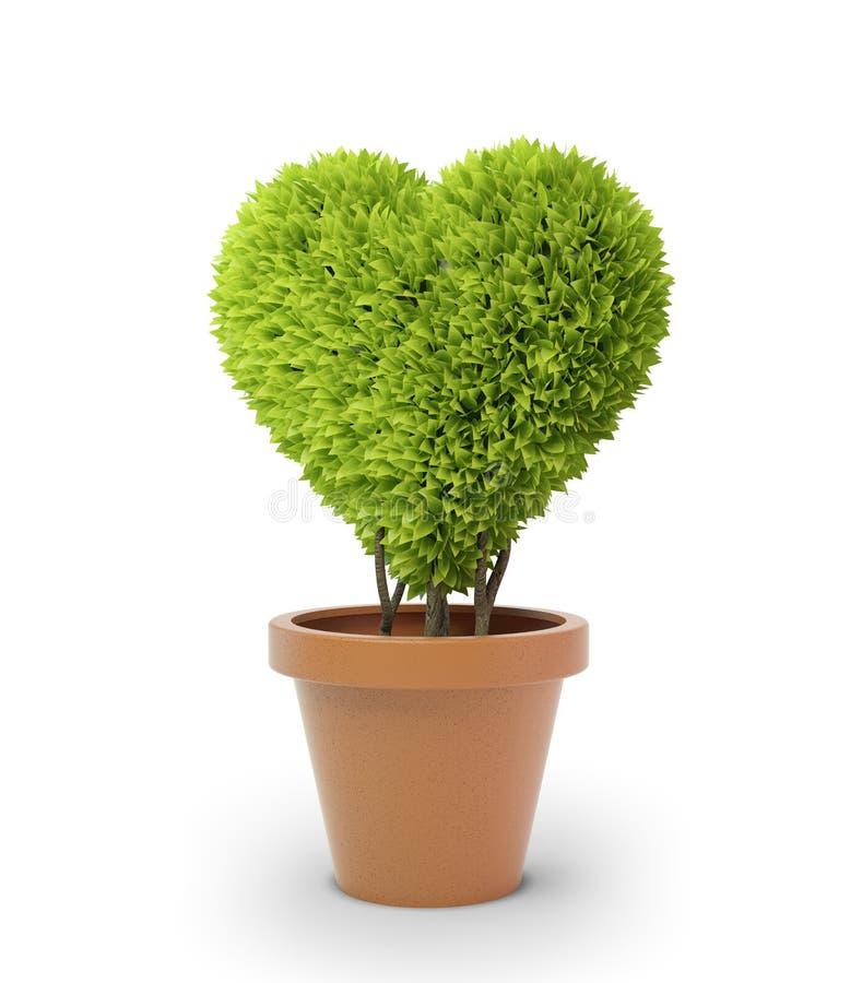 Heart Shaped Plant Royalty Free Stock Photography