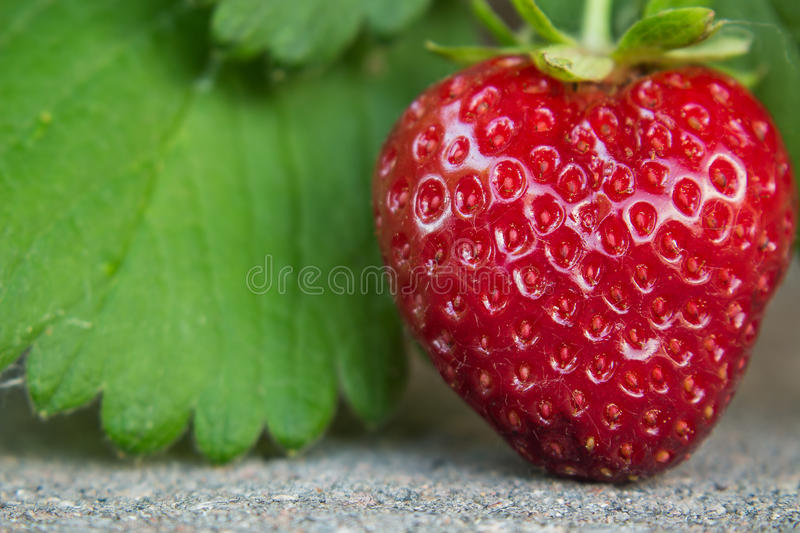 Heart shaped strawberry stock photos