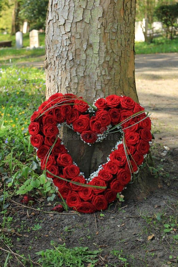 Sympathy flowers near a tree. Heart shaped sympathy flowers or funeral flowers near a tree, big red roses royalty free stock image