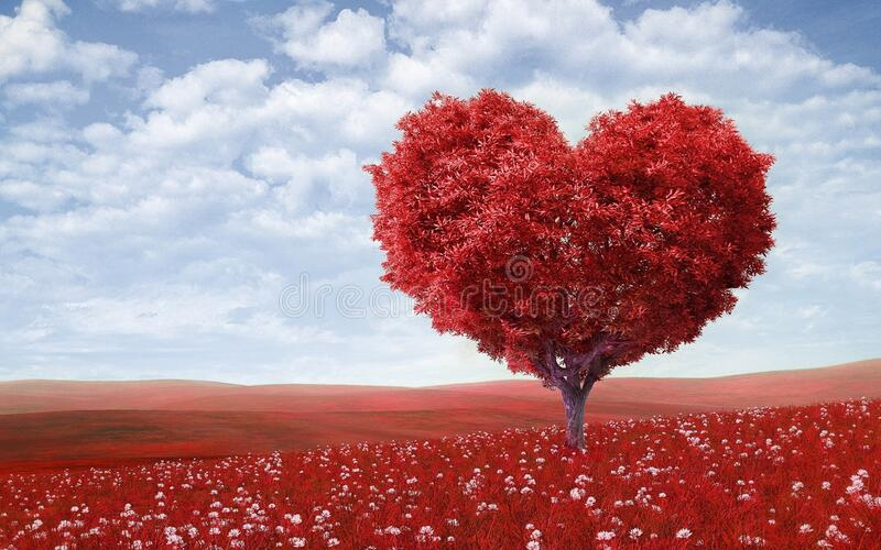 Download Heart shaped tree stock image. Image of leaves, countryside - 87962375